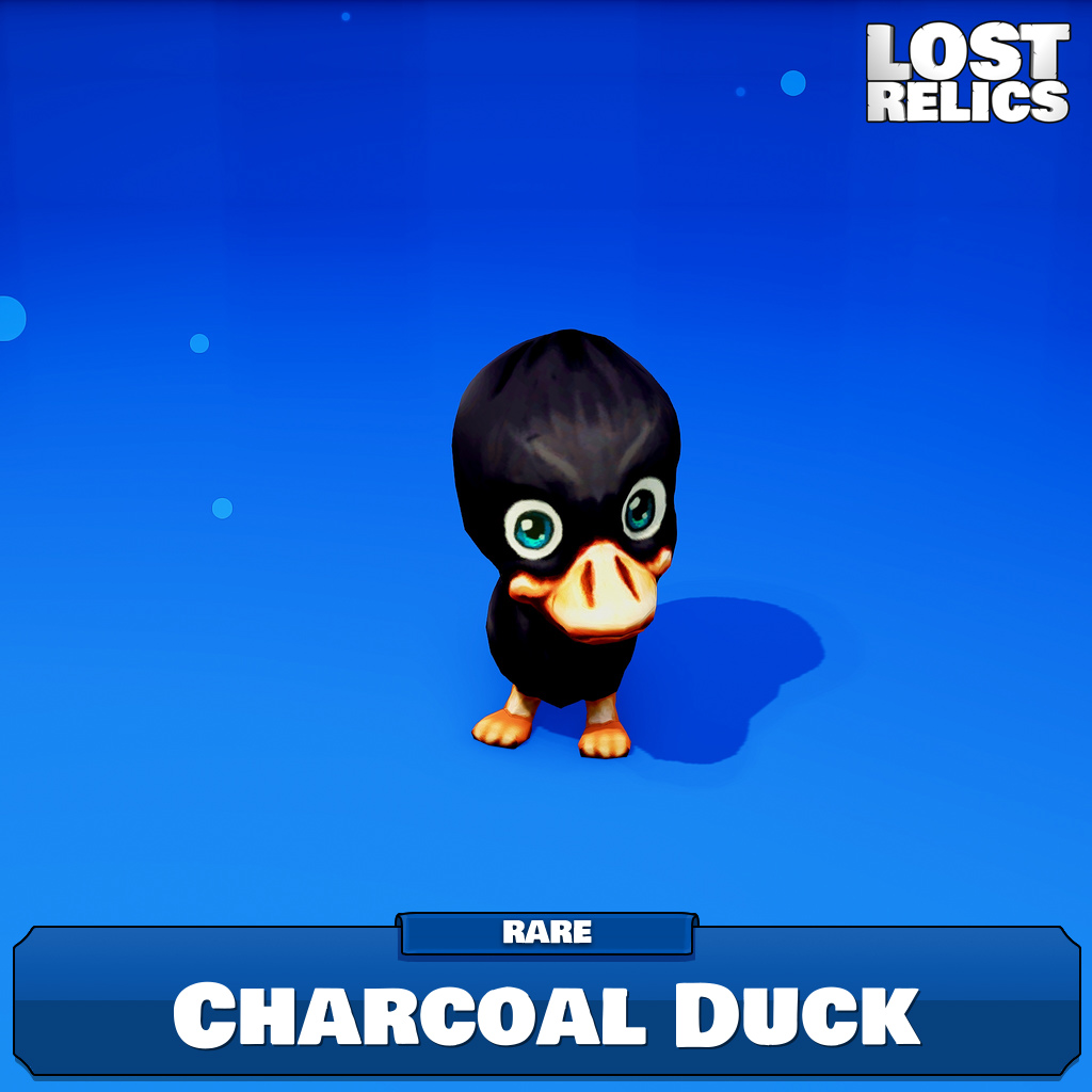 Charcoal Duck Image