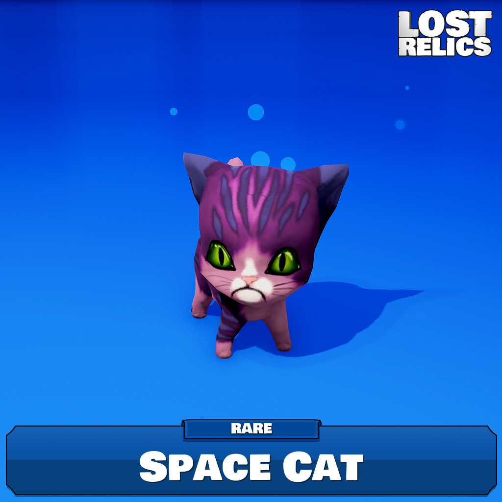 Space Cat Image